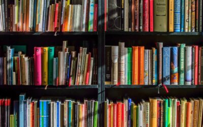 Literatura y ficción 3